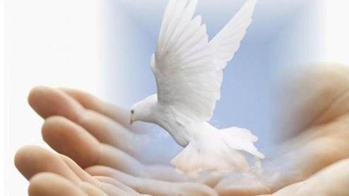 pregate-per-lo-spiritosanto-vaticanese